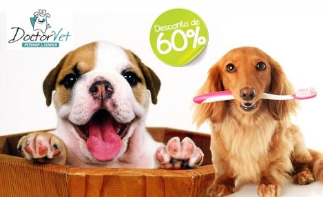 Cuidados com seu pet! 60% de desconto em  Banho + Tosa Higiênica + Hidratação + Corte de Unhas + Higiene Bucal. De R$ 60,00 por R$ 23,90 na Doctor Vet.
